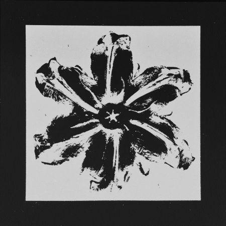 シルクスクリーン Robierb - Power Flower (Black)