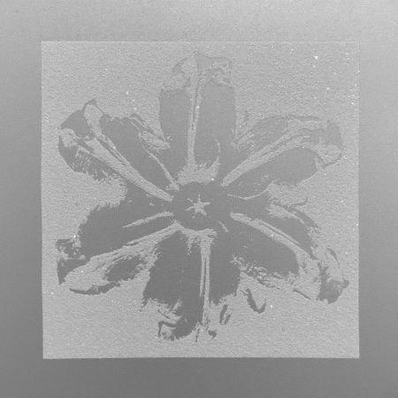 シルクスクリーン Robierb - Power Flower (Silver)