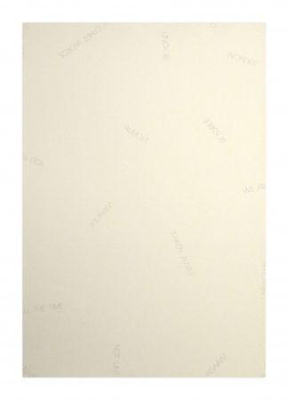 リトグラフ Barry - Réflexions