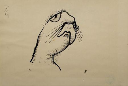 技術的なありません Hofer - Robbe (Seal)