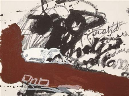 カーボランダム Tàpies - Roig i Negre 5