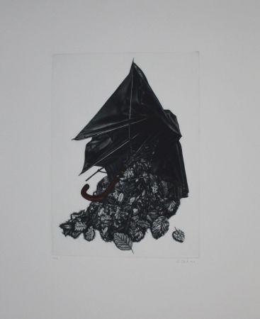 メゾチント彫法 Ebert - Schirm und Blättern