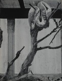 リトグラフ Aillaud - Serpent