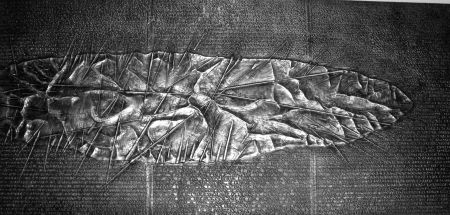 挿絵入り本 Pomodoro - Sette frammenti da l'Arte dell'uomo primordiale