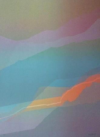 リトグラフ Bird - Spectre lumière 3