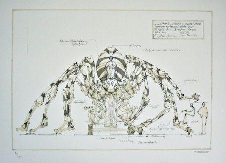 リトグラフ Delarozière - Spider - mecanique savante - Liverpool  La machine
