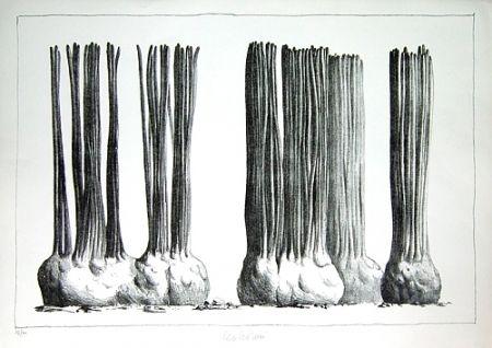 リトグラフ Lionni - Taluma trillosa