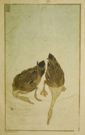 木版 Klemm - Tauchende Enten (Diving Ducks)