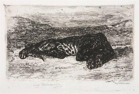 彫版 Delacroix - Tigre couché dans le désert