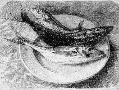エッチング Mongatti - Tre pesci dell'Adriatico
