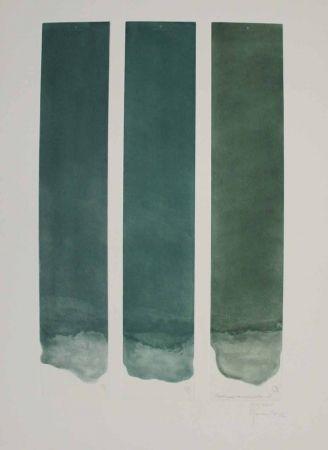 アクチアント Hernandez Pijuan - Tres colors per a un espai verd