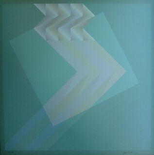リトグラフ Bird - Tribute to Vasarely 13