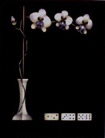 メゾチント彫法 Avati - Une théorie de dominos