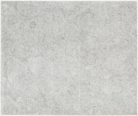 彫版 Ofili - Untitled