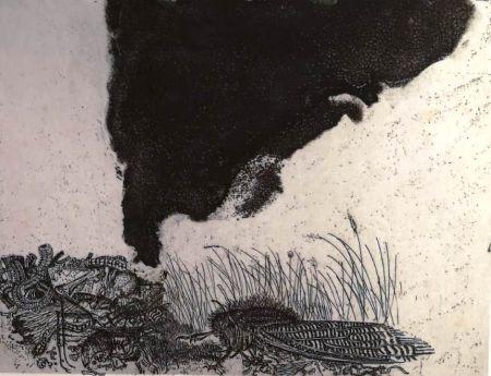 エッチング Zigaina - UNTITLED