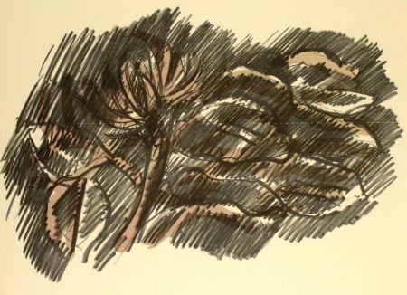 リトグラフ Morlotti - Vegetali