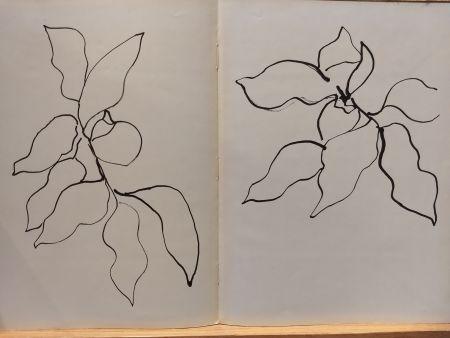 挿絵入り本 Matisse - Vence