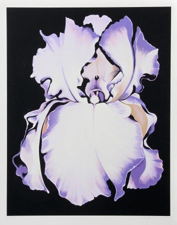 シルクスクリーン Nesbitt - White Iris on Black