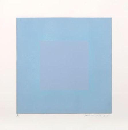 アクチアント Anuszkiewicz - Winter Suite (Light Blue with Light Blue)