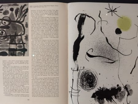 挿絵入り本 Miró - XXE No 24