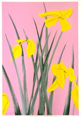 彫版 Katz - Yellow Flags 3