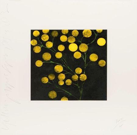 リトグラフ Sultan - Yellow Peppers