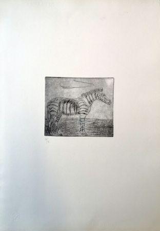 ポイントーセッシュ Ligabue - Zebra